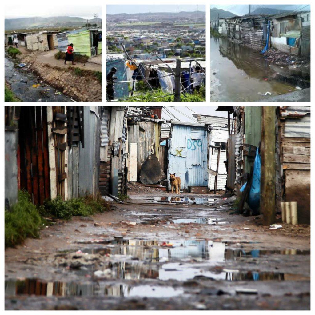 Eine Collage mit 4 Bildern des Feuchtgebiets am Rande des Townships Masiphumelele